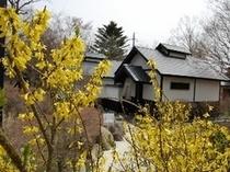 春の西山荘1