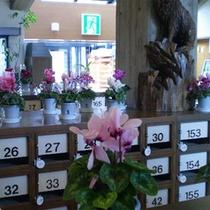 *【エントランス】季節のお花を飾っている玄関。冬はシクラメンが綺麗。