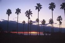 日向サンパーク