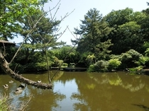 小室山 池