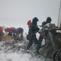<周辺・景観>深浦雪人参収穫体験