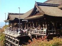 【清水寺・清水の舞台】当館から二寧坂、産寧坂を通って清水寺まで徒歩圏内でございます。