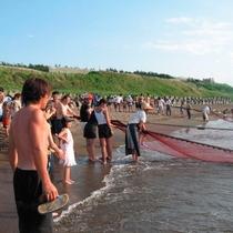観光地引網体験/鵜の浜海岸に古くから伝わる伝統行事!大人も子供も楽しめます♪