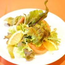 (ご夕食一例)自家製菜園の野菜を使用したサラダ