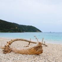 一番近い海岸で、大浜海浜公園が車で25分の距離にございます。