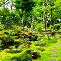 新緑の日本庭園