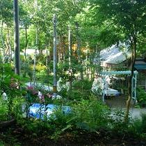 *【庭】四季の草花が楽しめます。