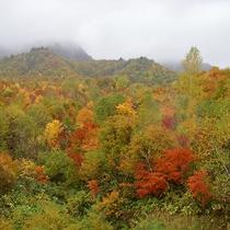 *【紅葉】会津高原の全山紅葉は、例年10月中~11月上旬が見頃です。