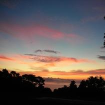 橘湾に沈む夕陽が綺麗~
