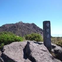 新ルートの登山ルートが出来ました!