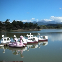 GWや夏休みにはスワンボートでも遊べる諏訪の池♪♪
