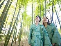 敷地内の竹林