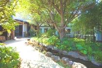 緑がおおい中庭