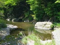 登米町の自然・宿から車で5分、北上川の支流 羽沢川。夏には魚釣り、水遊び、バ―べキュウが出来るよ。