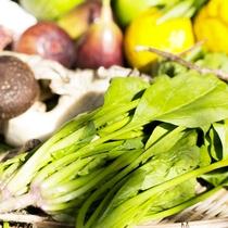 地元でとれた新鮮な食材や自家農園で栽培したものを使っています。