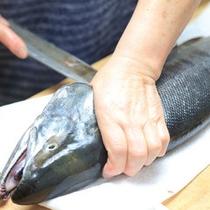 *獲れたて新鮮な海の幸をご提供いたします。