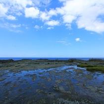 *千畳敷海岸/西海岸の景勝地の一つで、岩肌が海面に隆起した独特の光景が約12kmにわたって続いていま