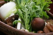 地元で採れる有機野菜