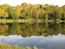 木戸池湖畔の紅葉