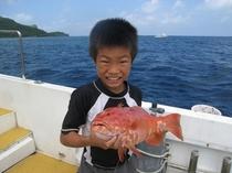 高級魚 アカジン!