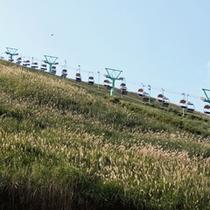 【大室山のリフト】秋には一山すすきが覆い尽くします。