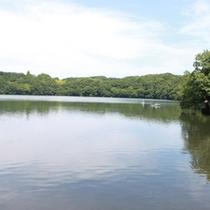 【一碧湖(いっぺきこ】別名:伊豆の瞳と言われる湖です