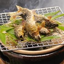 【ご夕食/焼物】狩野川で獲れた鮎の塩焼きはお宿うち山の夏のご夕食の定番