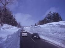 スカイライン 雪の回廊