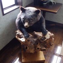 *館内の様子/マタギの里ならでは!熊の剥製がみなさまのお越しをお出迎えします♪