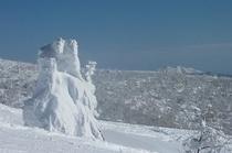 樹氷と秋田駒ヶ岳
