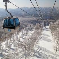 *森吉山の樹氷/ゴンドラで一気に樹氷スポットへ。ゴンドラ乗り場までは車で2分です。