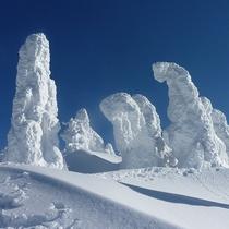 *森吉山の樹氷/別名「スノーモンスター」の異名をとる樹氷群。そのスケールに圧倒されます。