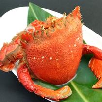 【夕食一例】あさひ蟹