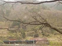 山荘おまつり全景