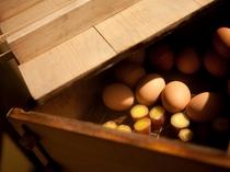【温泉卵とふかし芋】