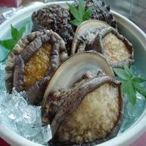 函館産蝦夷あわびの歯ごたえと味をお楽しみください
