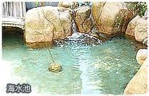 海水池があり、イカや魚介類を新鮮な状態で保つことができます。