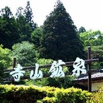 *寺山鉱泉