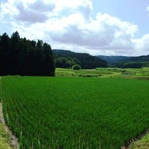*田園風景③