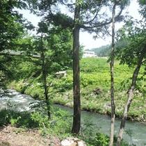 *露天風呂からの眺め/川沿いにあり、せせらぎの音を聴きながら天然温泉をお楽しみいただけます。