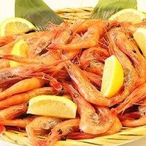 *甘エビ/新潟は美味しい甘海老の産地。ぷりぷりの獲れたてをお楽しみください!