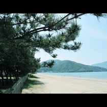 日本三大松原 気比の松原