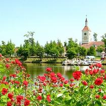 *とうほくニュージーランド村/四季折々の花や植物にふれあえる。