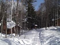冬のBコテージ(イメージ)