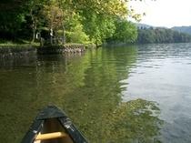 野尻湖カヌー