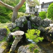 *当館入口にある松と池
