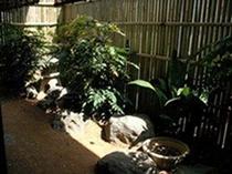 畳席からの庭