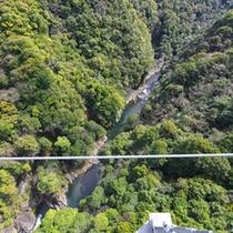 *○周辺観光○照葉大吊橋 歩行者専用の吊り橋としては国内2番目の高さ142m!