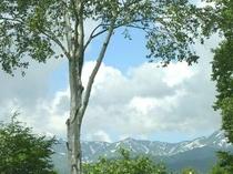 妙高笹ヶ峰の7月