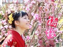 2017梅さくら
